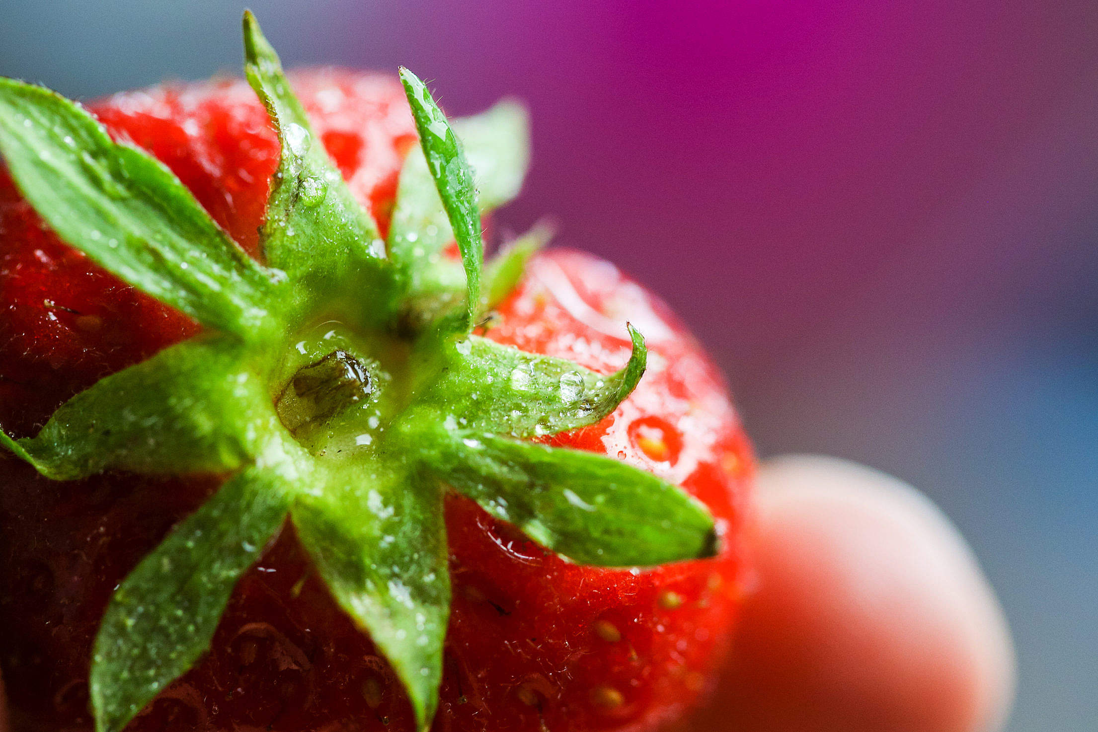 Colorful Strawberry Close Up Free Stock Photo