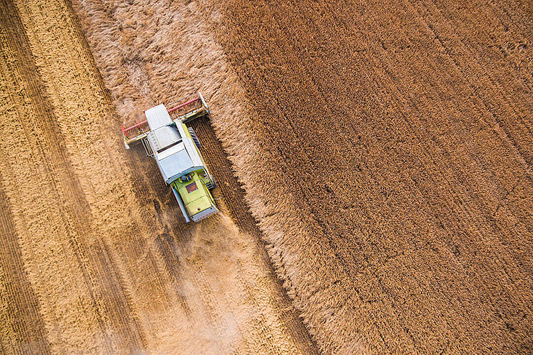 Download Combine Harvester at Work from Bird's Eye View #2 FREE Stock Photo