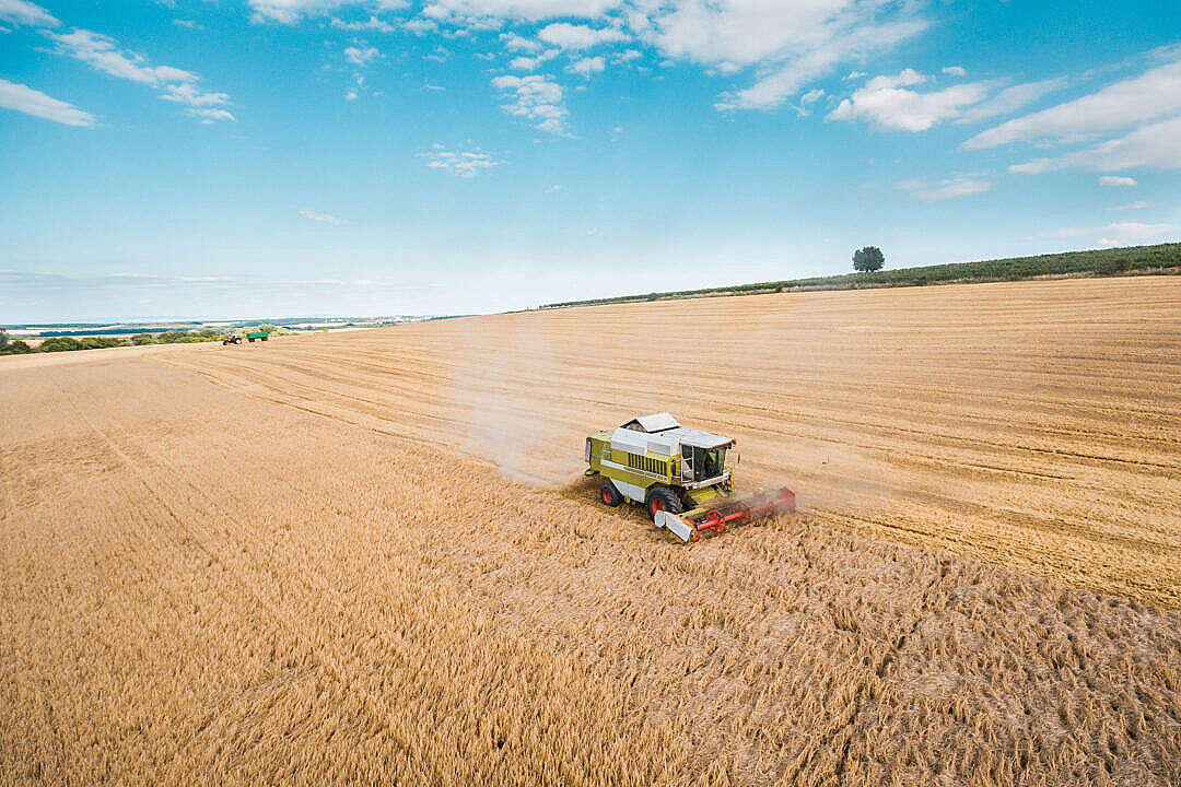 Download Combine Harvester Harvesting Wheat Crops FREE Stock Photo