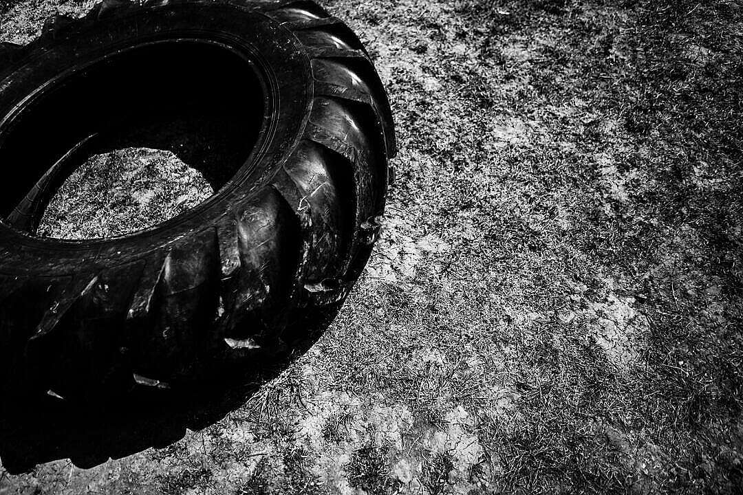 Download Crossfit Training Tire FREE Stock Photo