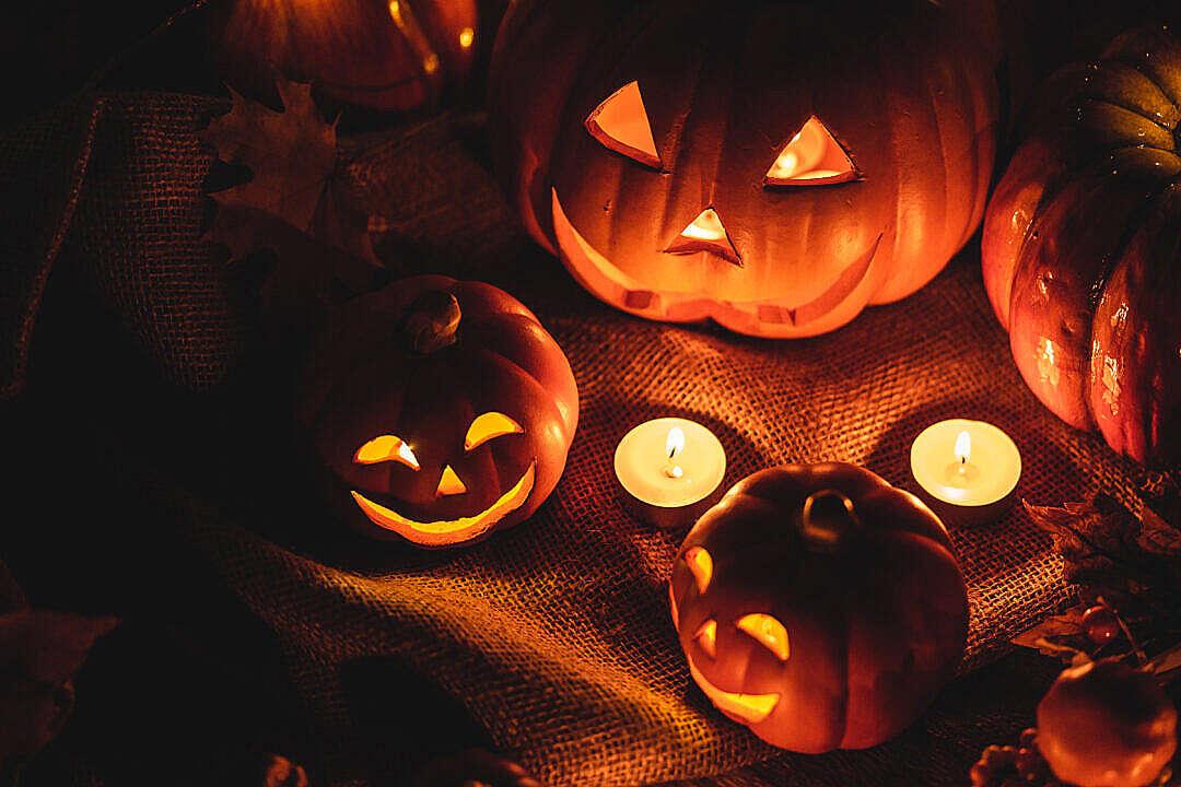 Download Decorative Glowing Pumpkins FREE Stock Photo