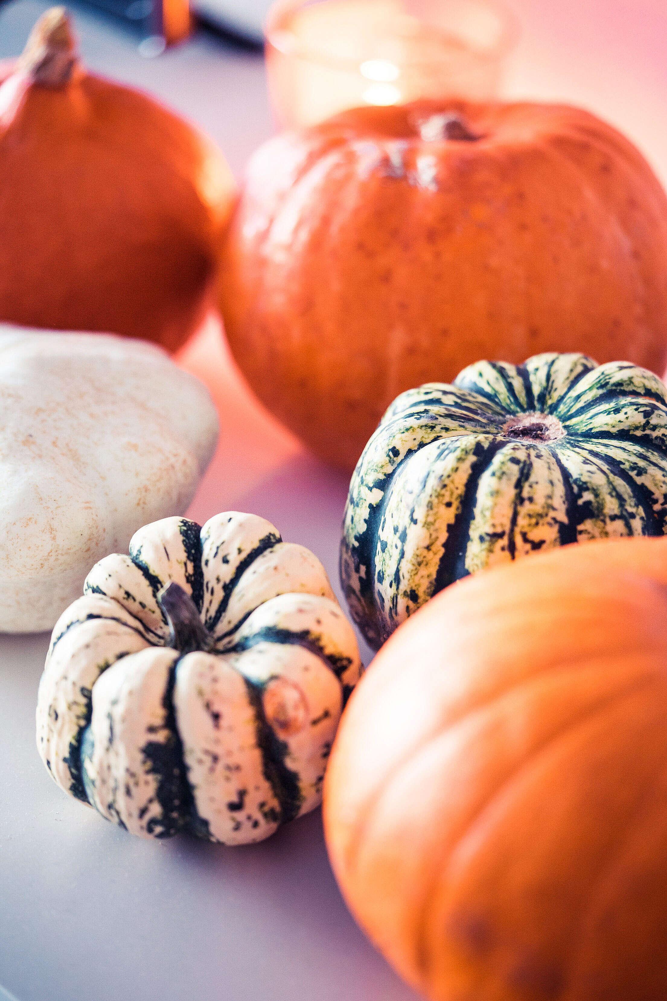 Decorative Pumpkins Free Stock Photo