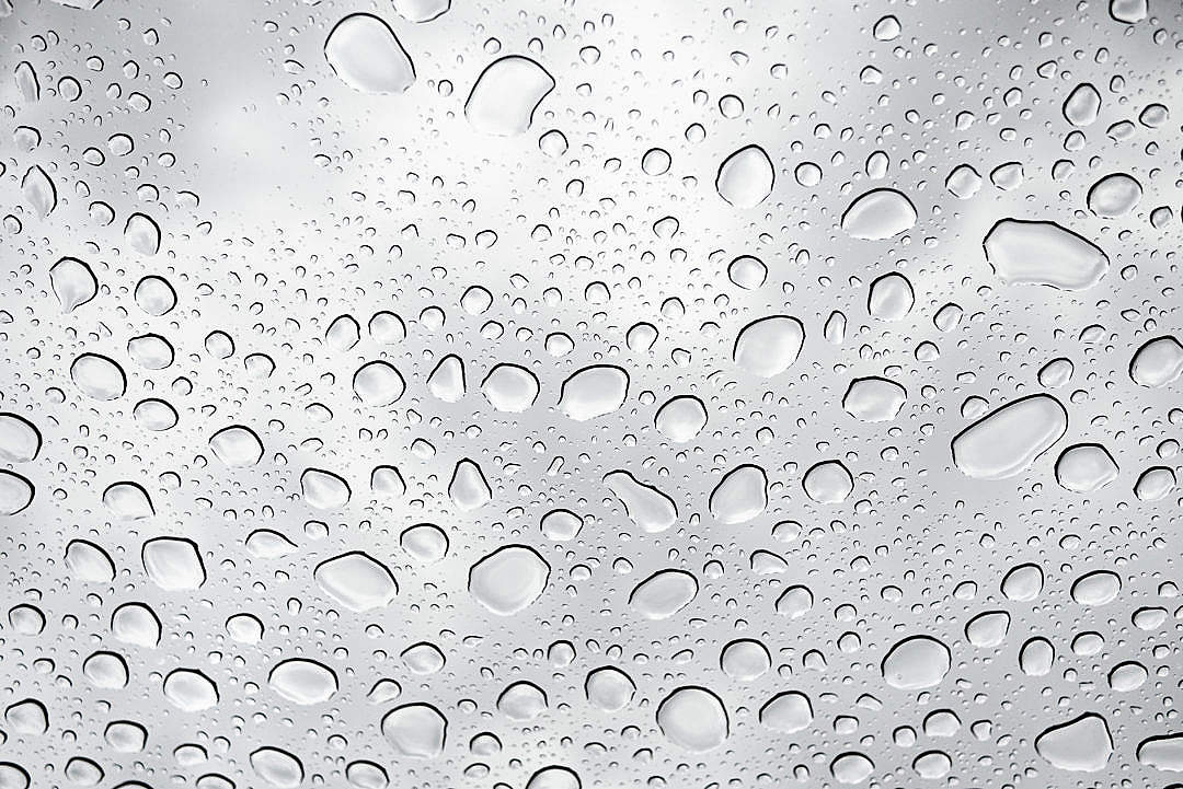 Download Drops on Glass FREE Stock Photo