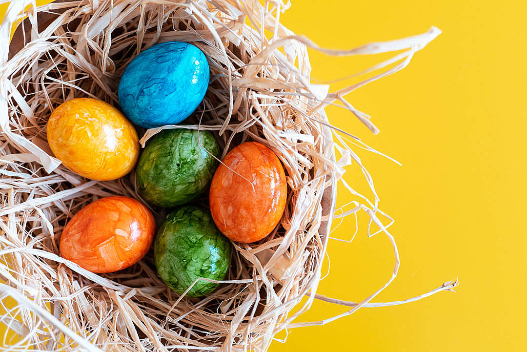 Download Dyed Eggs Prepared for Easter Holidays FREE Stock Photo