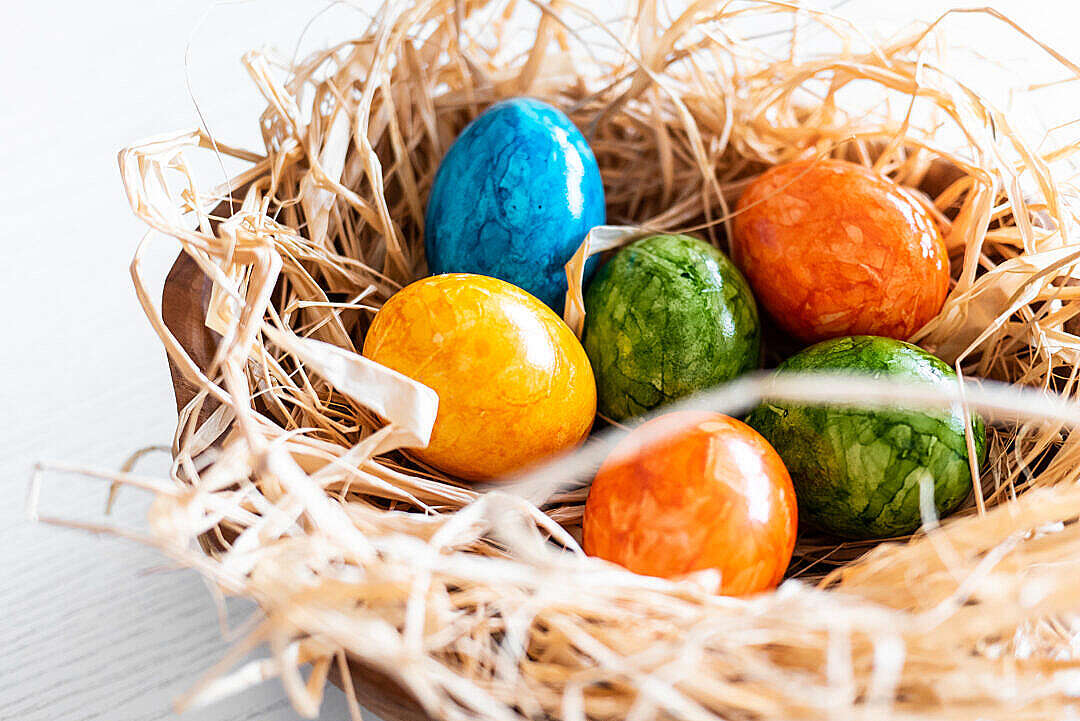 Download Easter Eggs Colored Close Up FREE Stock Photo