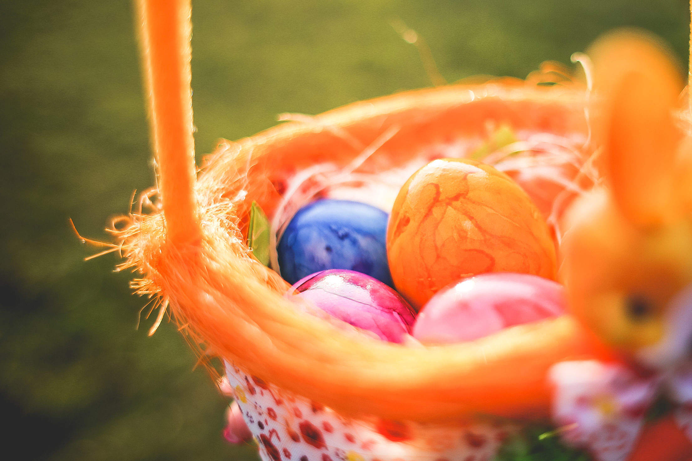 Easter Eggs in Basket Close Up Free Stock Photo