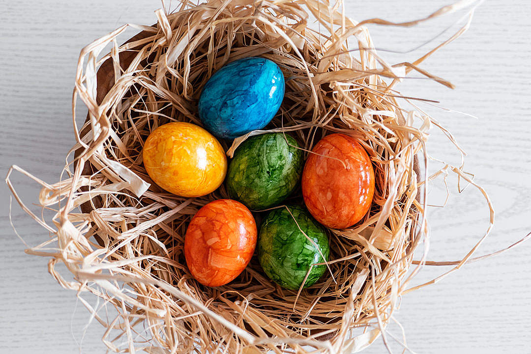 Download Easter Eggs on Straw FREE Stock Photo