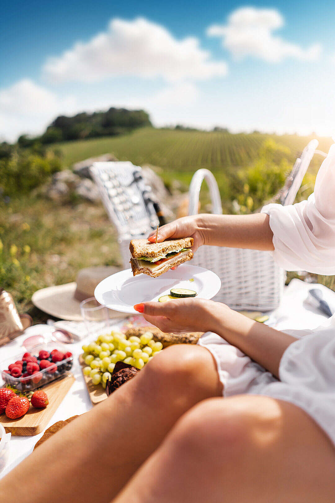 Download Eating a Sandwich on a Picnic Date FREE Stock Photo