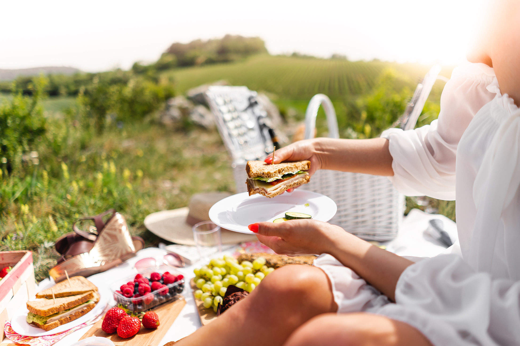 Eating Sandwich at a Picnic Free Stock Photo