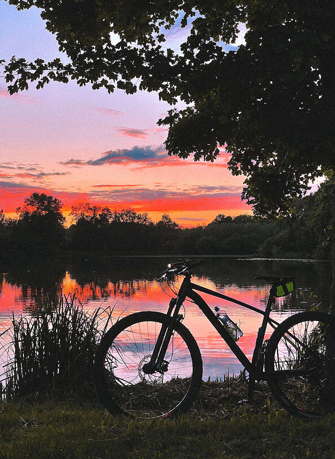 Download Evening MTB Ride Mountain Bike with Sunset Golden Sky FREE Stock Photo