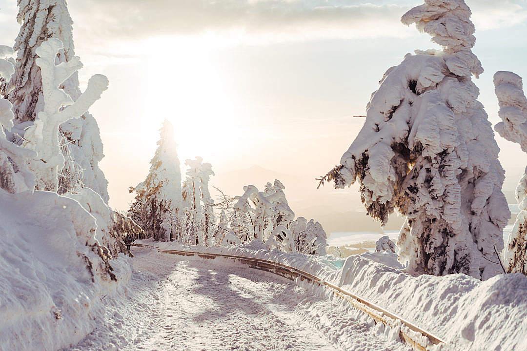 100+ Free Winter Stock Photos & Images | picjumbo