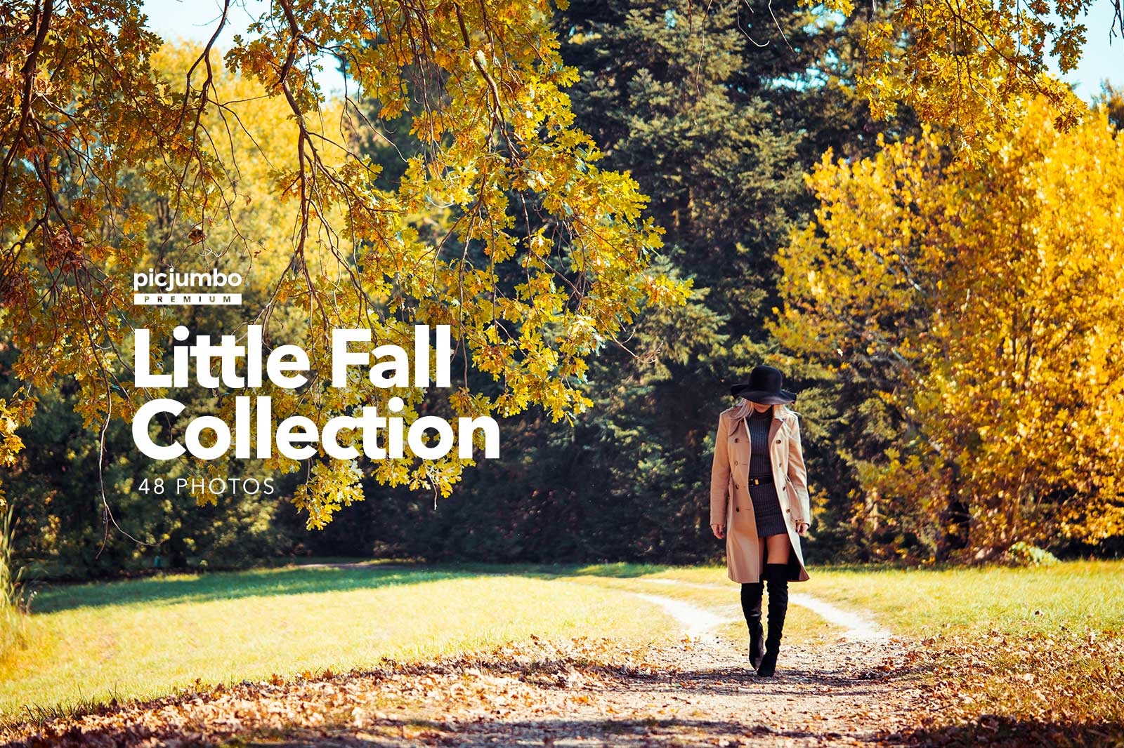 Join PREMIUM and get full collection now: Little Fall Collection