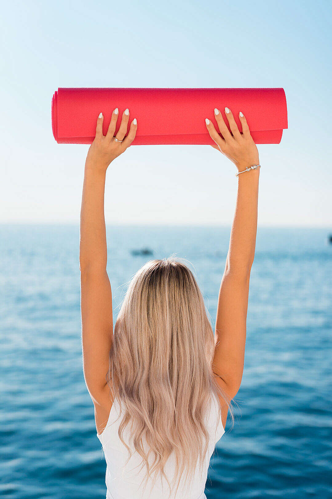 Download Fitness Girl with Yoga Pilates Mat FREE Stock Photo
