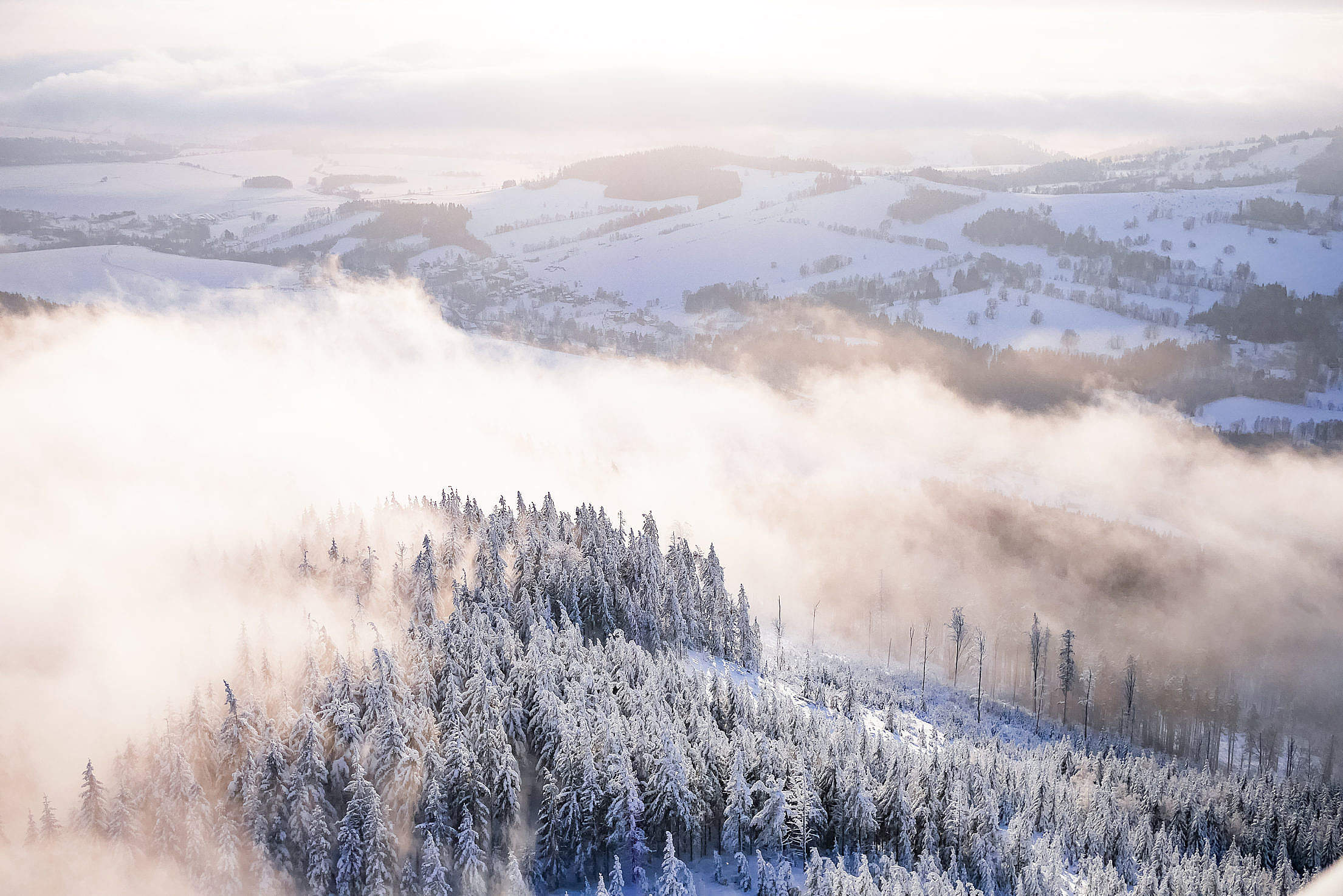 Fog In Snowy Forest Winter Scenery Free Stock Photo