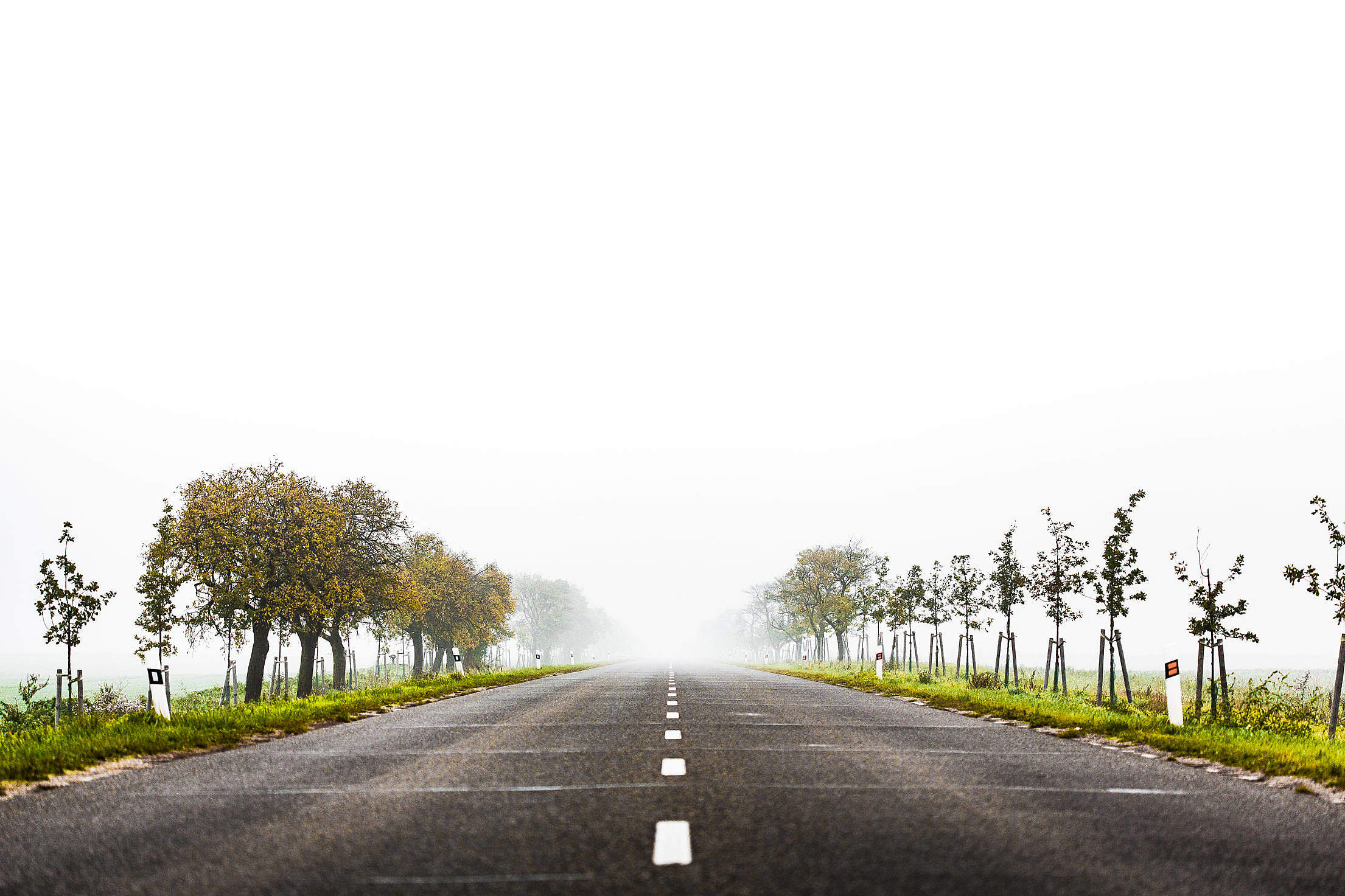 Foggy Road to Nowhere Free Stock Photo