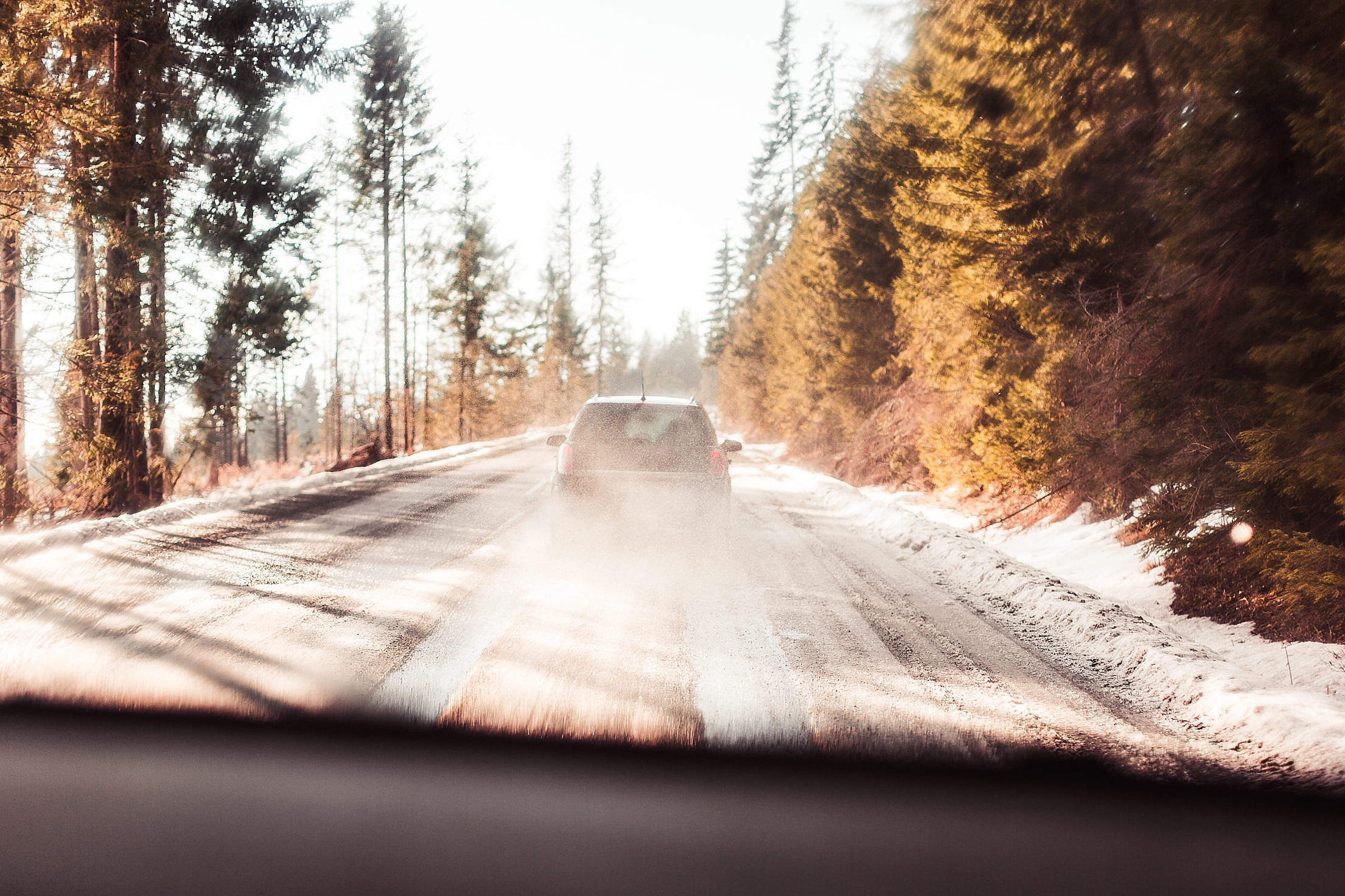 Download Following a Car on Forest Road Free Stock Photo