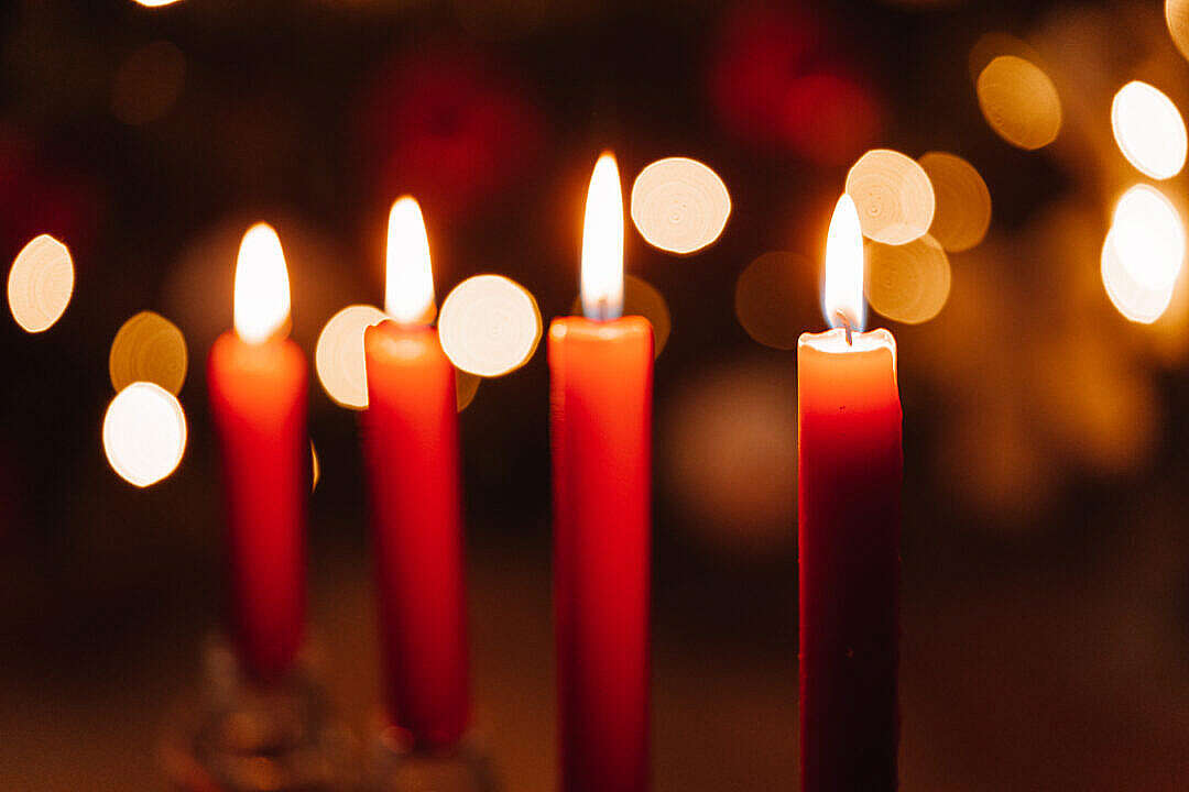 Download Four Red Christmas Candles FREE Stock Photo