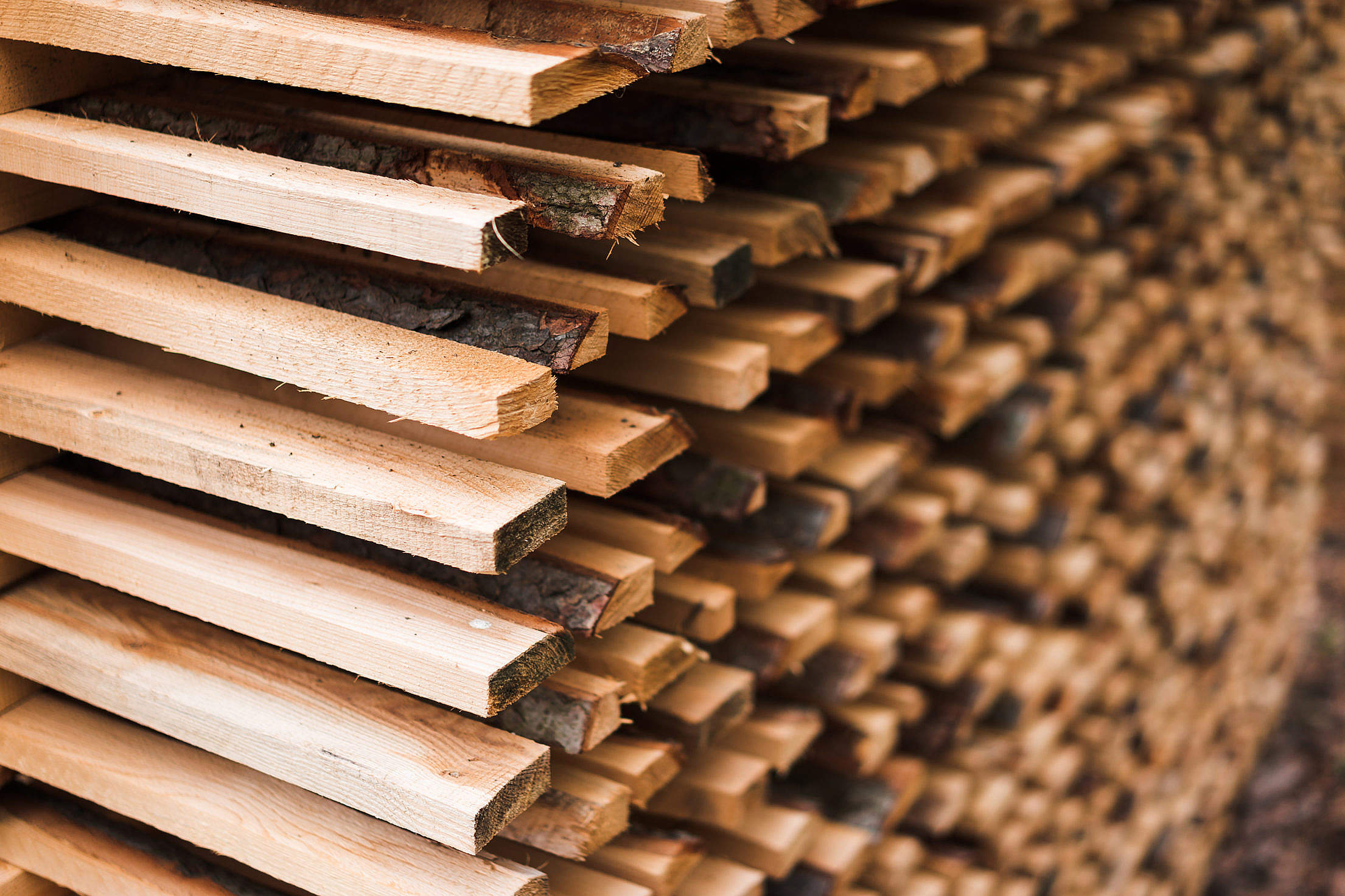 Freshly Cut Wood Stacked for Lumber Air Drying Free Stock Photo