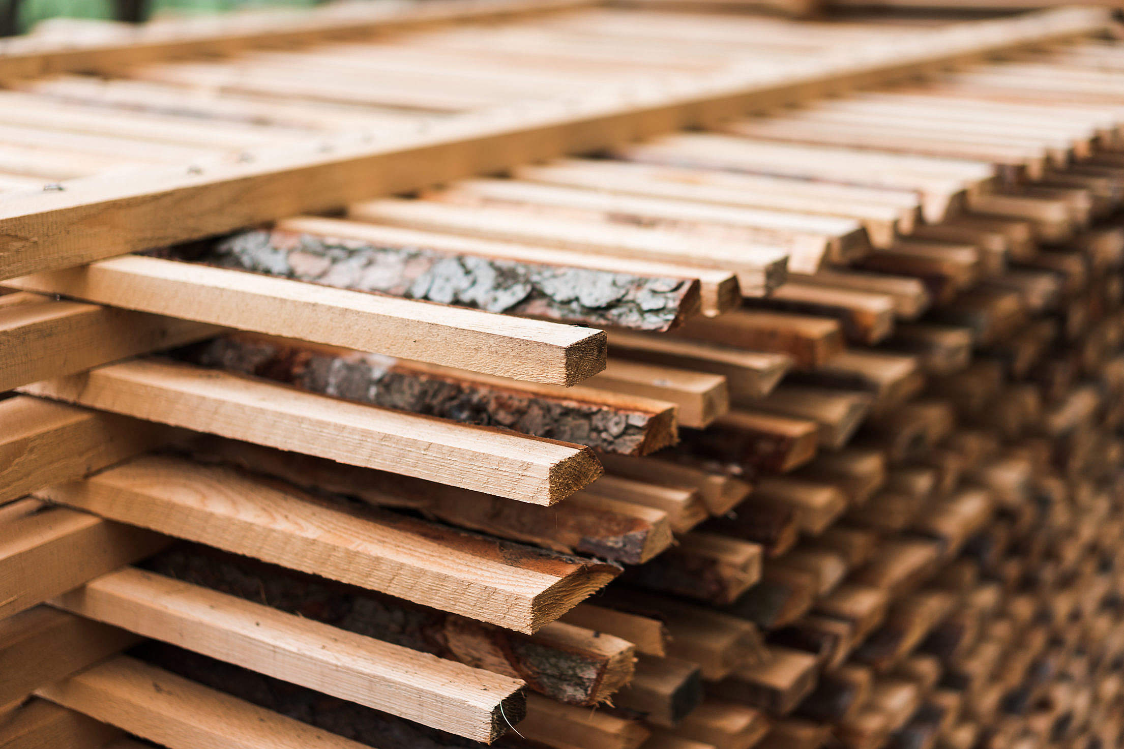 Freshly Cut Wood Stacked for Lumber Air Drying Close Up Free Stock Photo