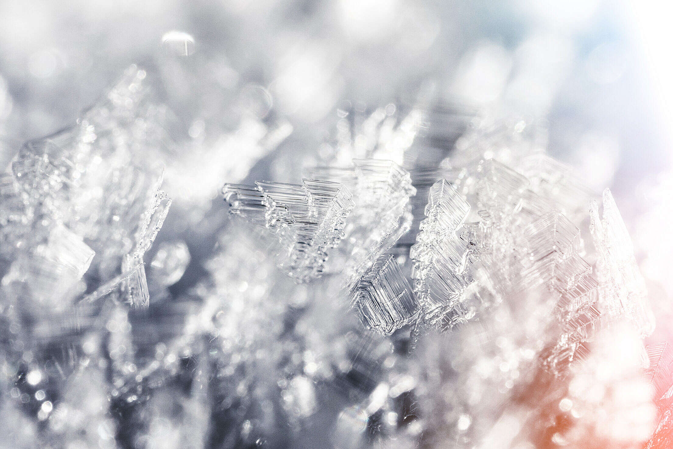 Frozen Snowflakes Winter Hoarfrost Crystals Close Up Free Stock Photo