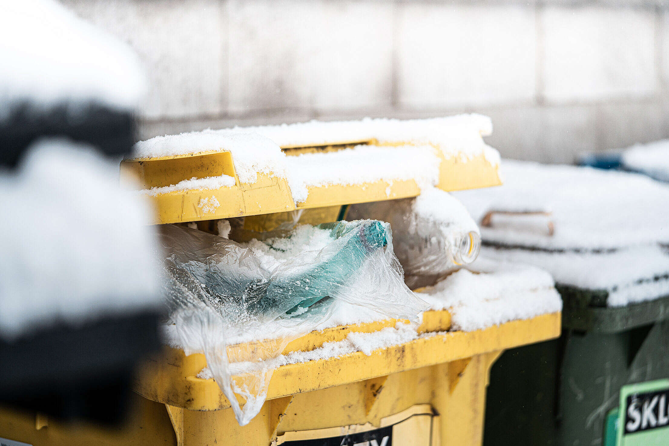 Full Garbage Can for Plastics Free Stock Photo
