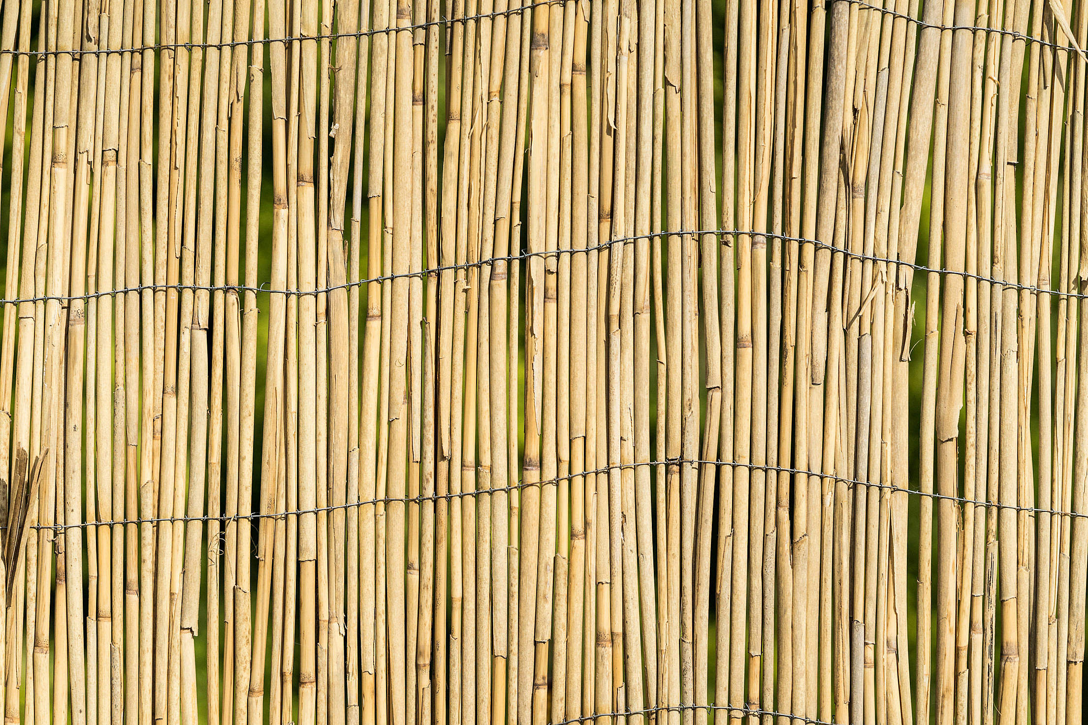 Garden Bamboo Wall Fence Texture Background Free Stock Photo