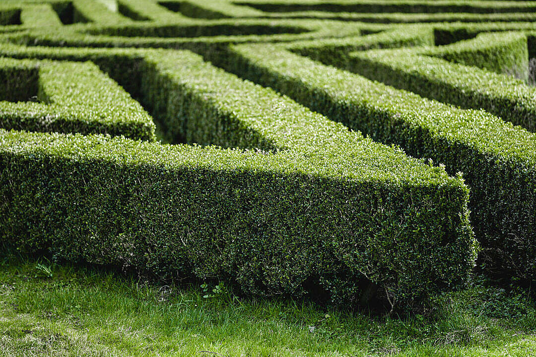 Download Garden Maze in The Lednice Castle Park FREE Stock Photo
