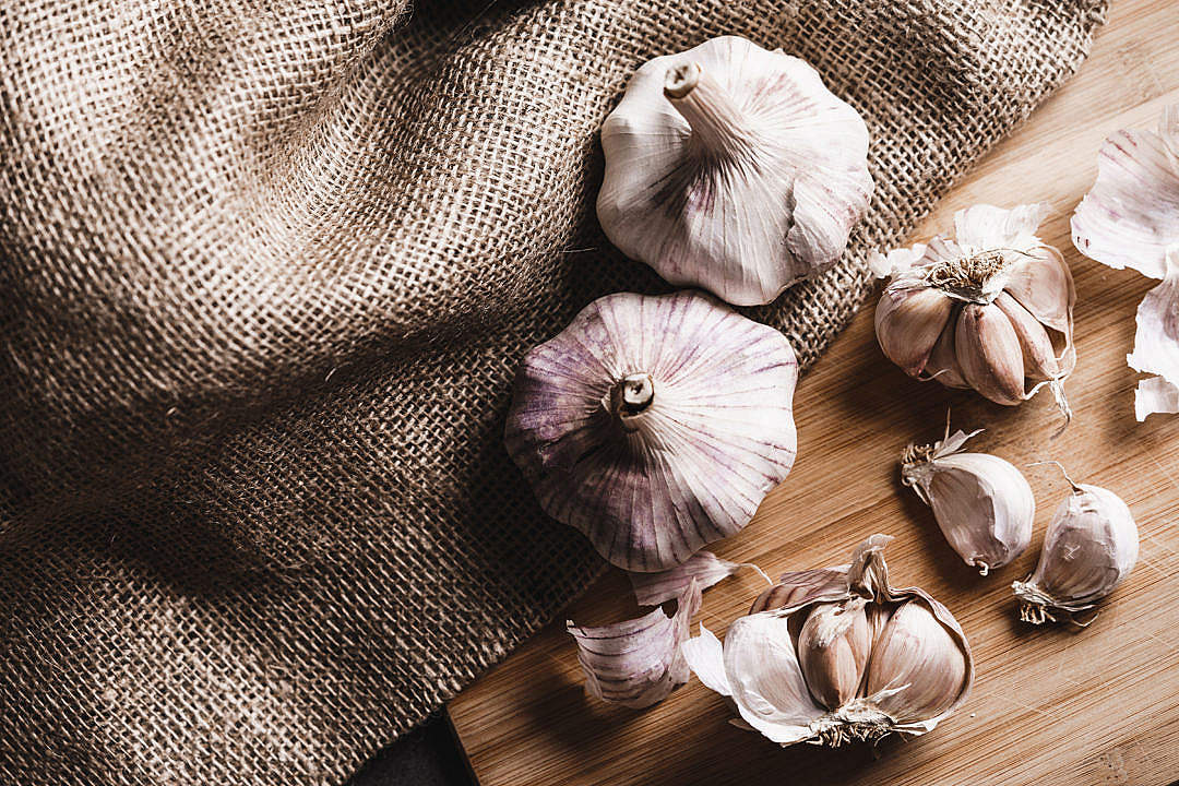 Download Garlic FREE Stock Photo