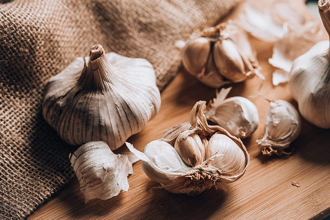 Download Garlic Bulb with Garlic Cloves FREE Stock Photo