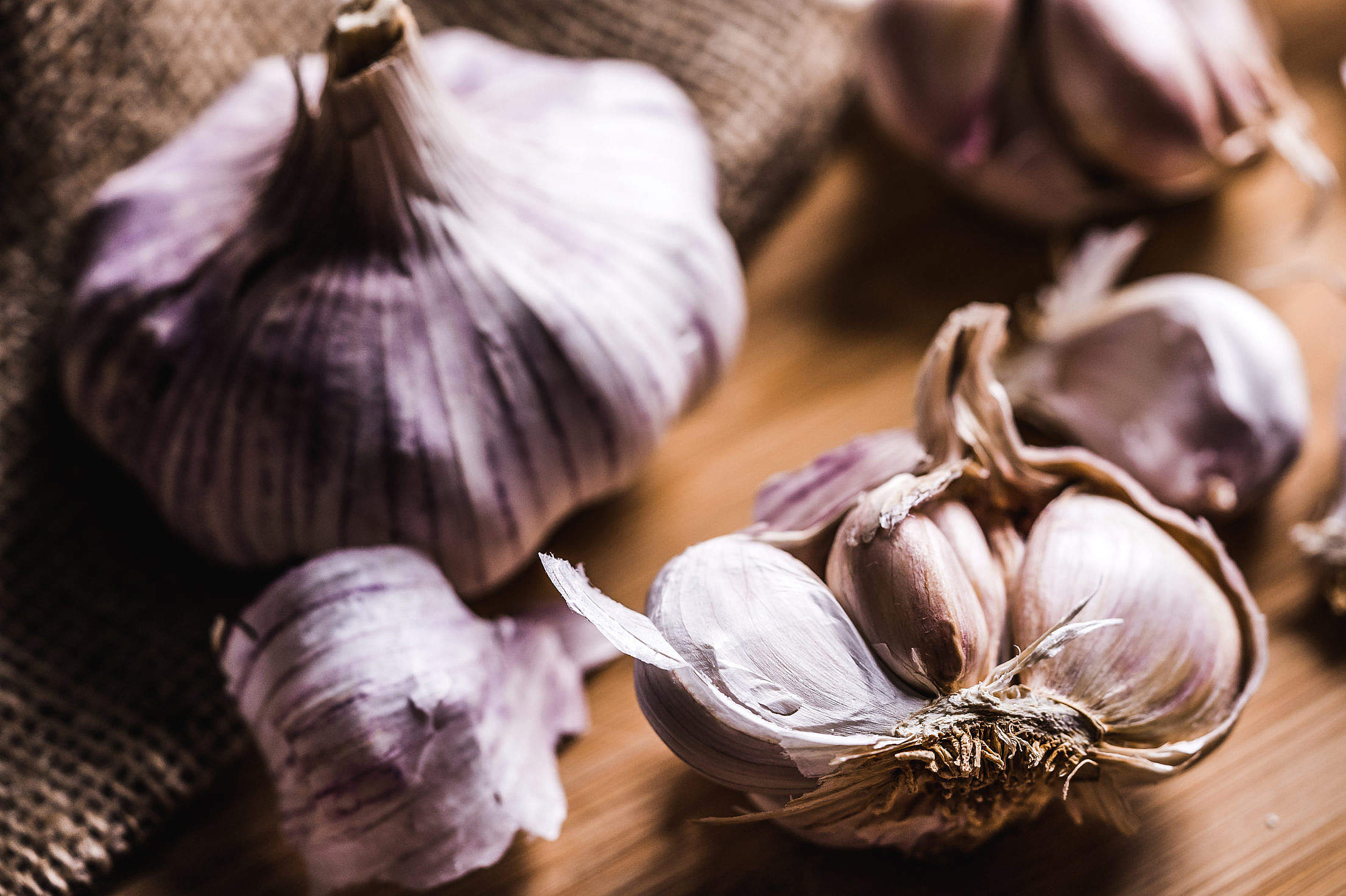 Download Garlic Close Up Free Stock Photo