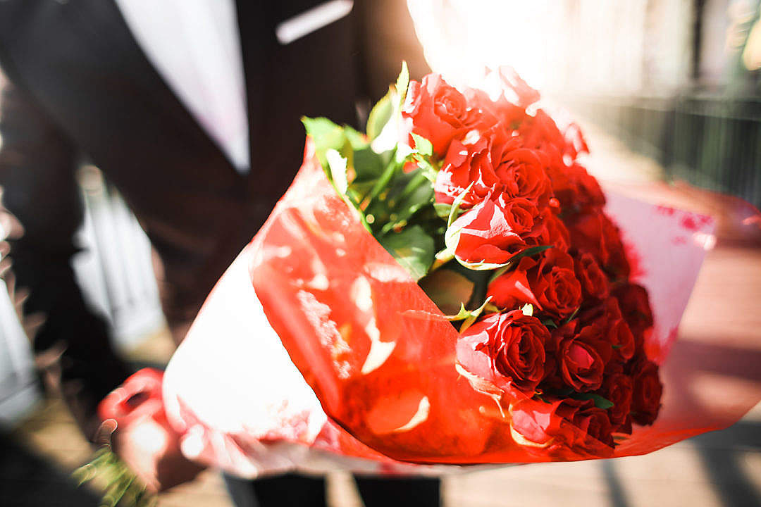 Download Gentleman Holding a Bouquet of Roses #2 FREE Stock Photo