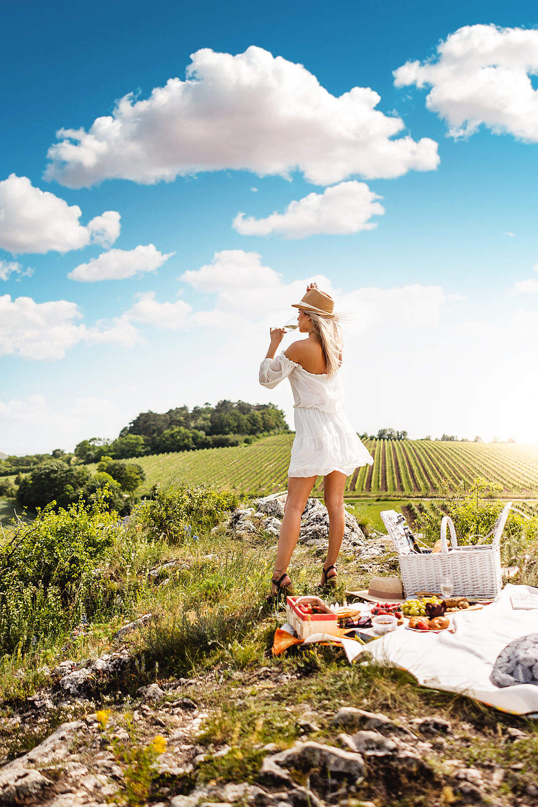 Download Girl Drinking Prosecco at a Picnic FREE Stock Photo