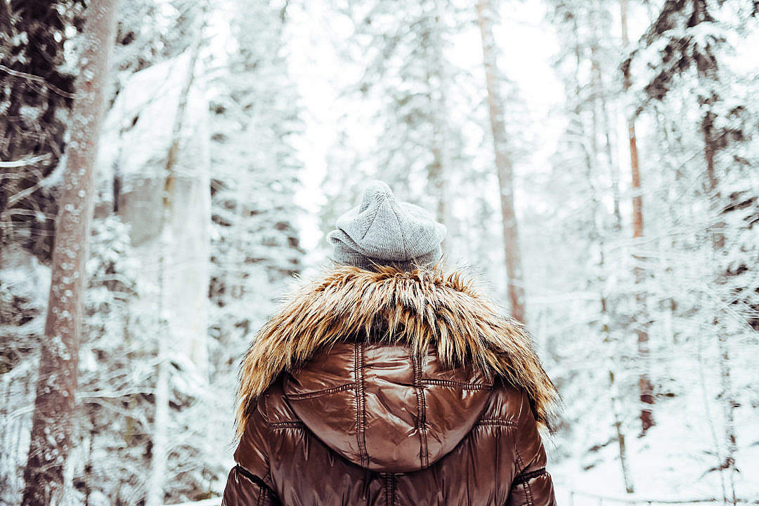 Download Girl in Winter Jacket Walking in Snowy Forest FREE Stock Photo