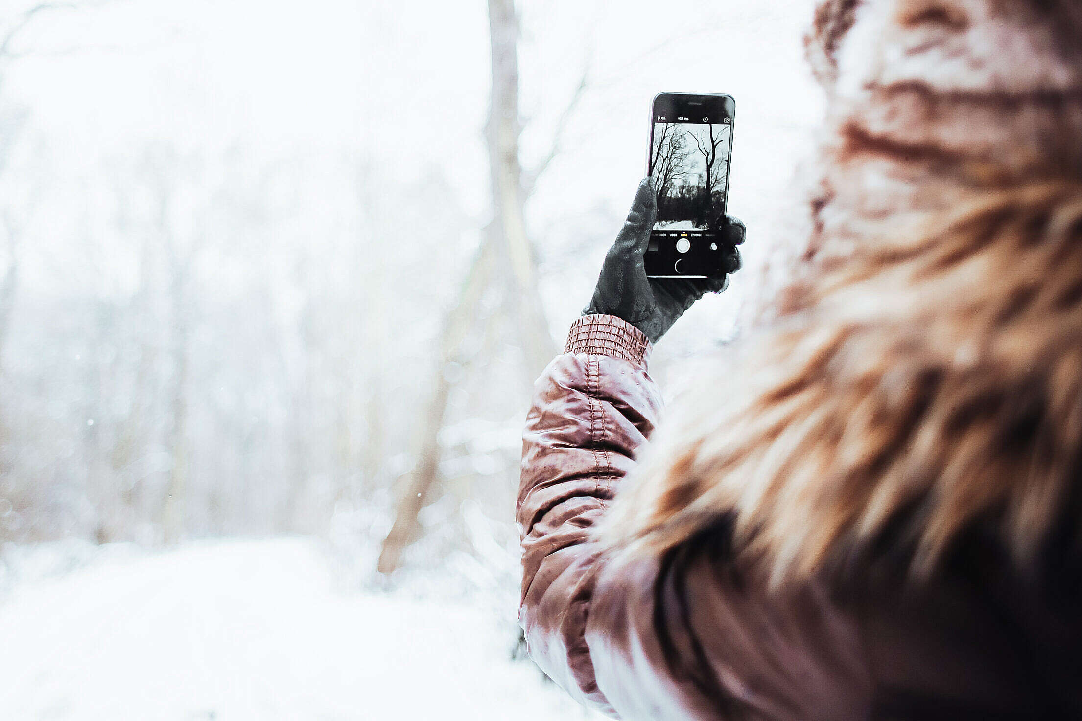 Girl Shooting with her iPhone 6 in Winter Free Stock Photo