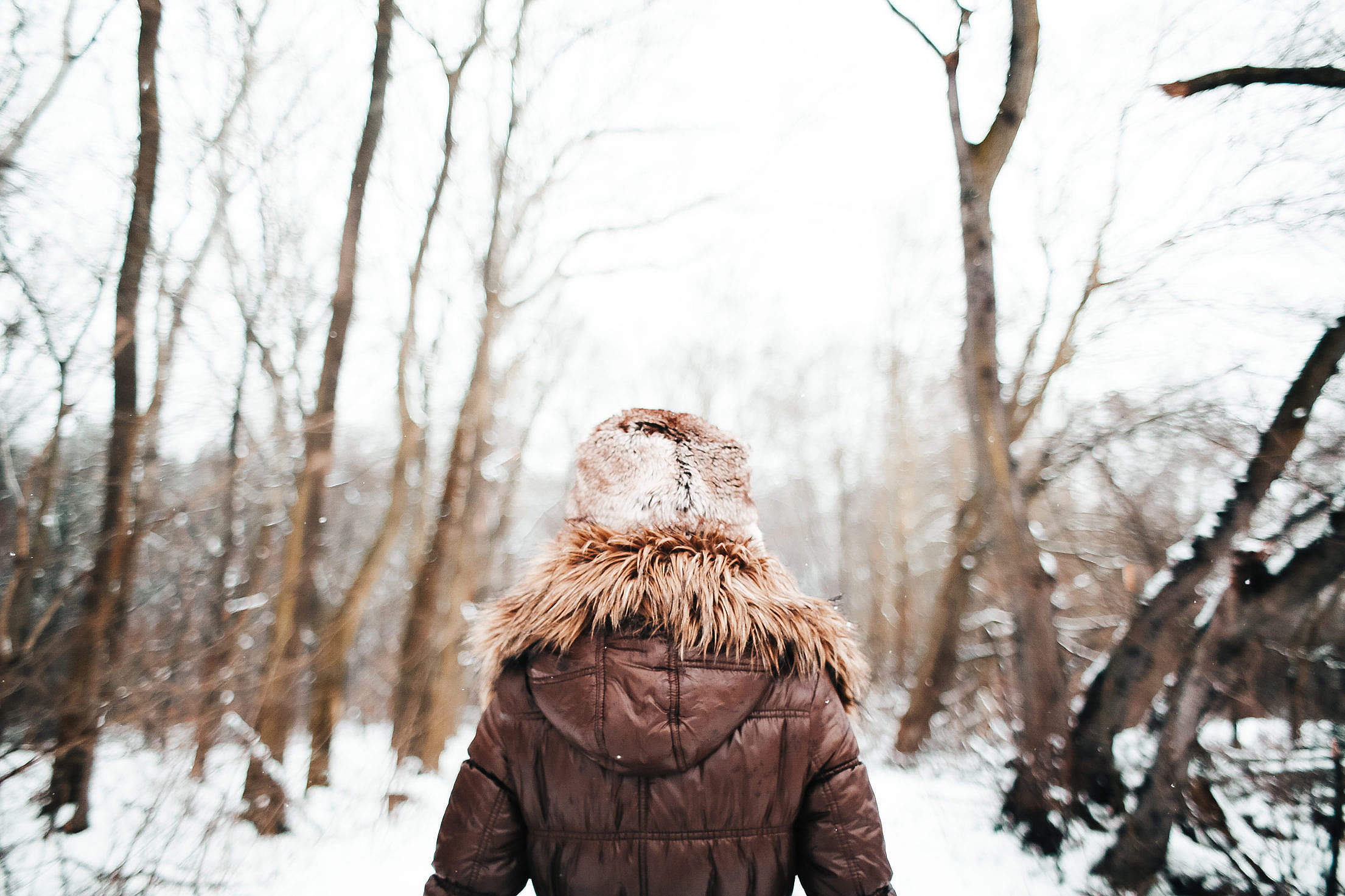 Girl Walking in Snowy Forest Free Stock Photo