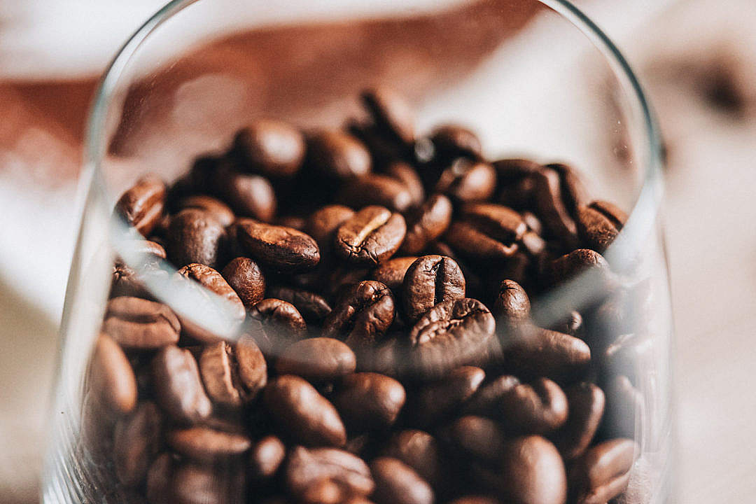 Download Glass of Coffee Beans FREE Stock Photo