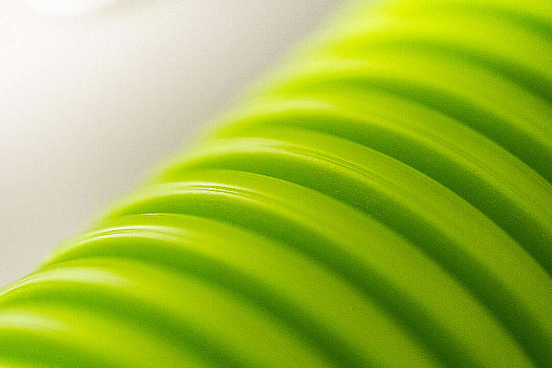 Download Green Hygienic Flexible Heat Recovery Ventilation Pipe FREE Stock Photo