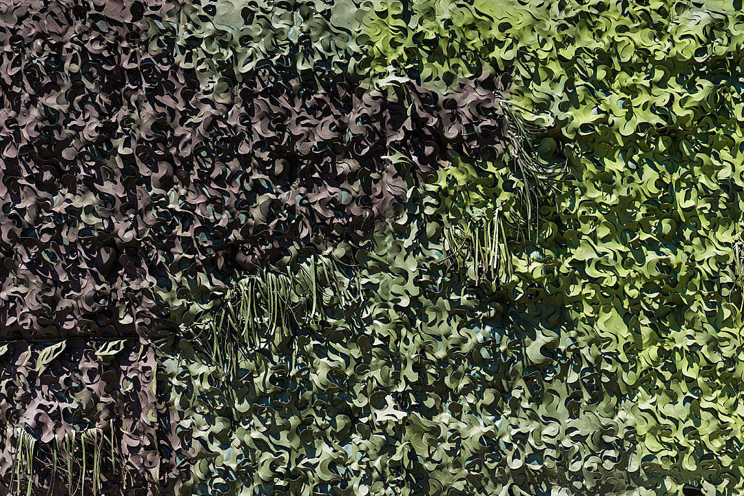 Download Green Real Army Camouflage Masking FREE Stock Photo