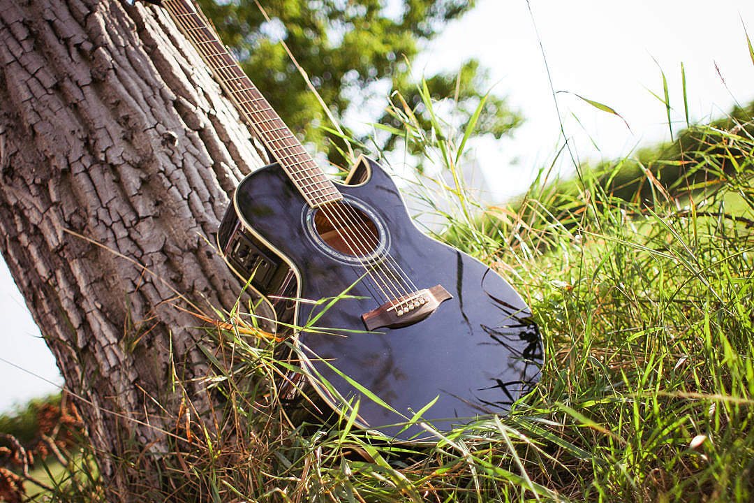 Download Guitar In Sunny Grass FREE Stock Photo