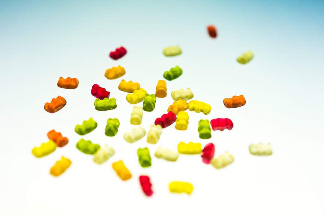 Download Gummy Bears FREE Stock Photo