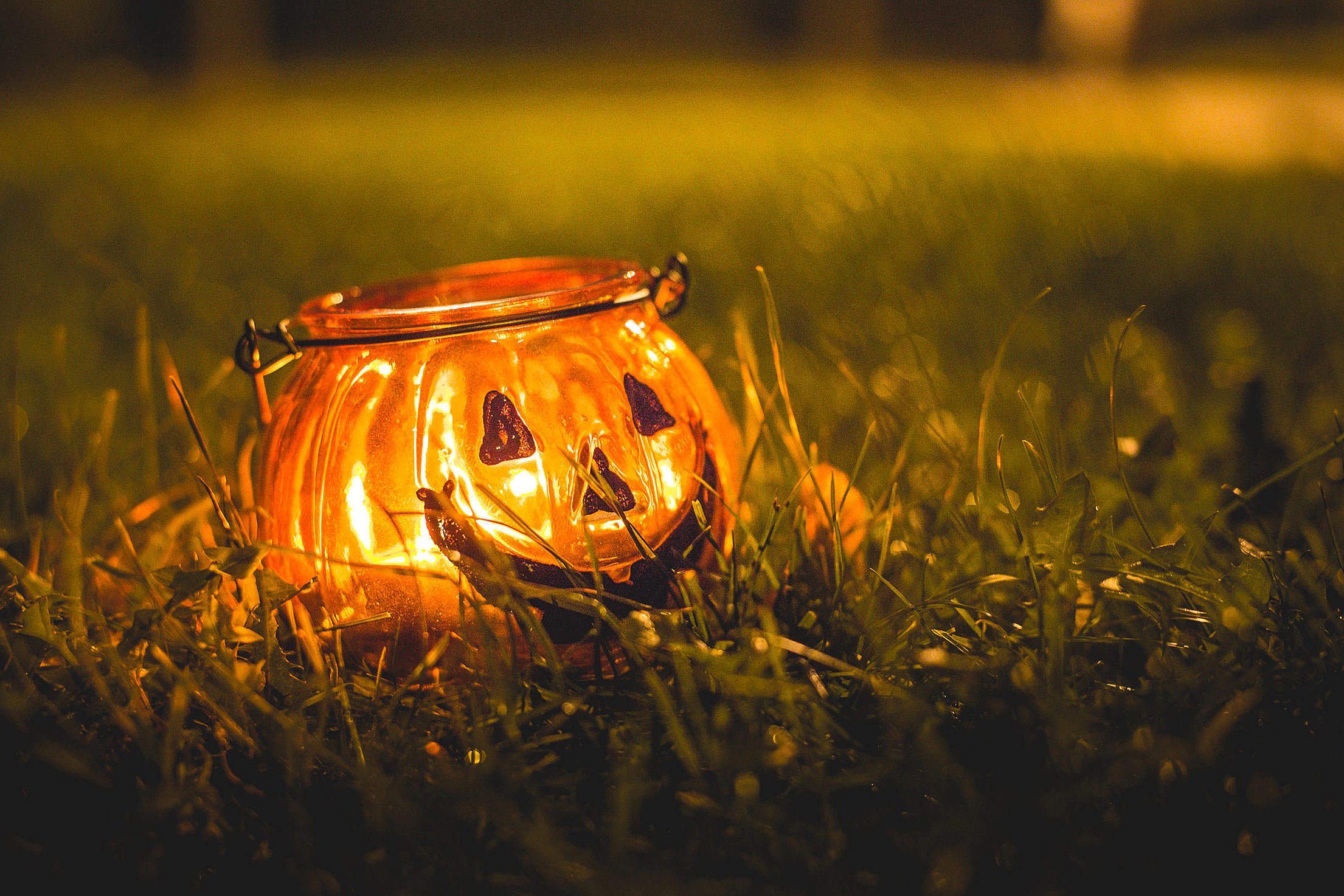 Halloween Candle Holder in Evening Grass Free Stock Photo