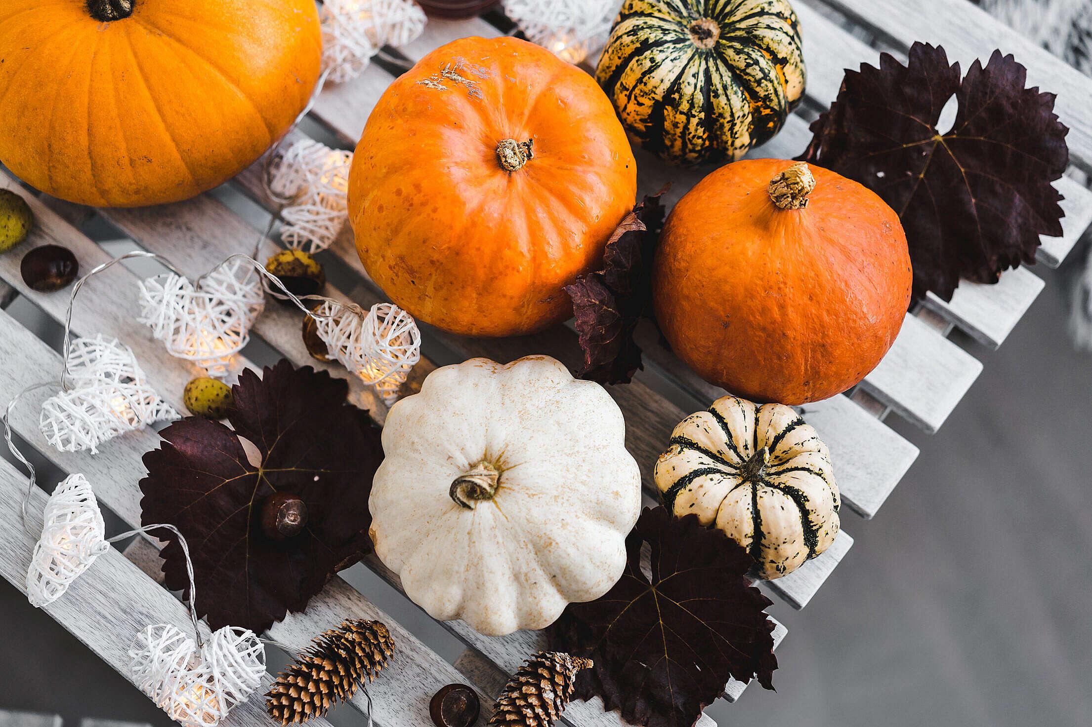 Halloween Pumpkin Free Stock Photo
