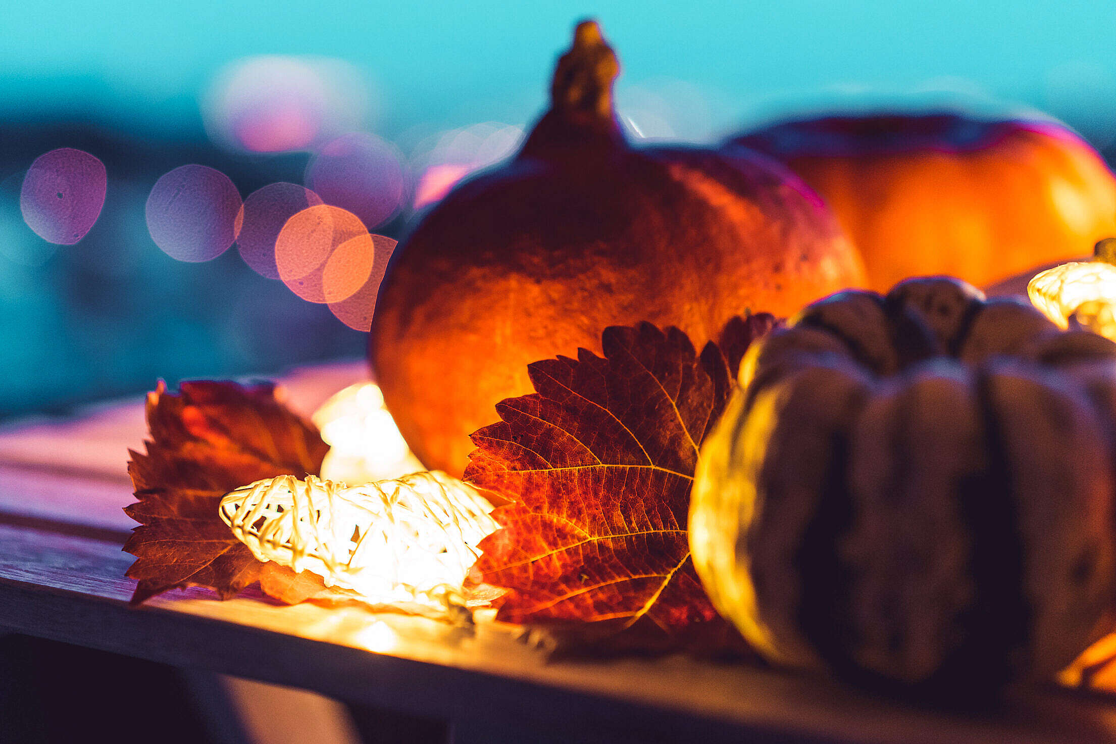 Halloween Pumpkins with Evening Bokeh Free Stock Photo