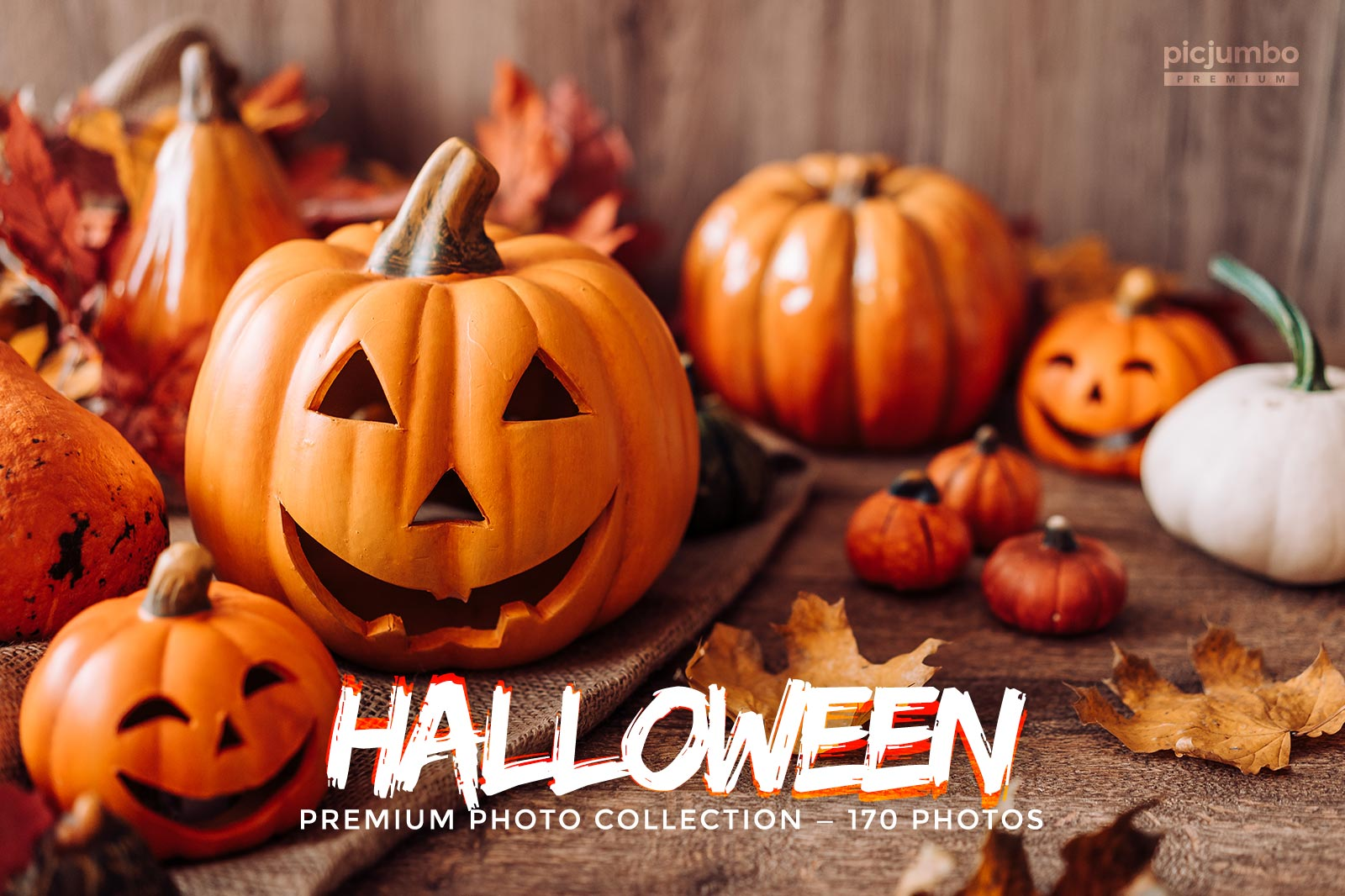Click here to see Halloween PREMIUM Collection!