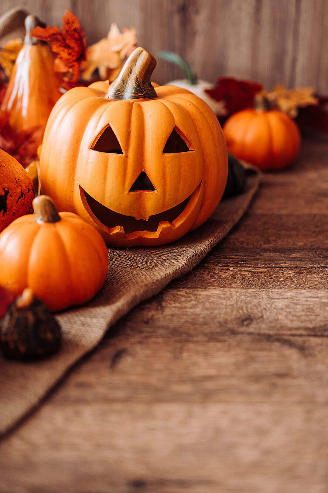 Download Halloween Vertical Still Life with Place for Your Text FREE Stock Photo