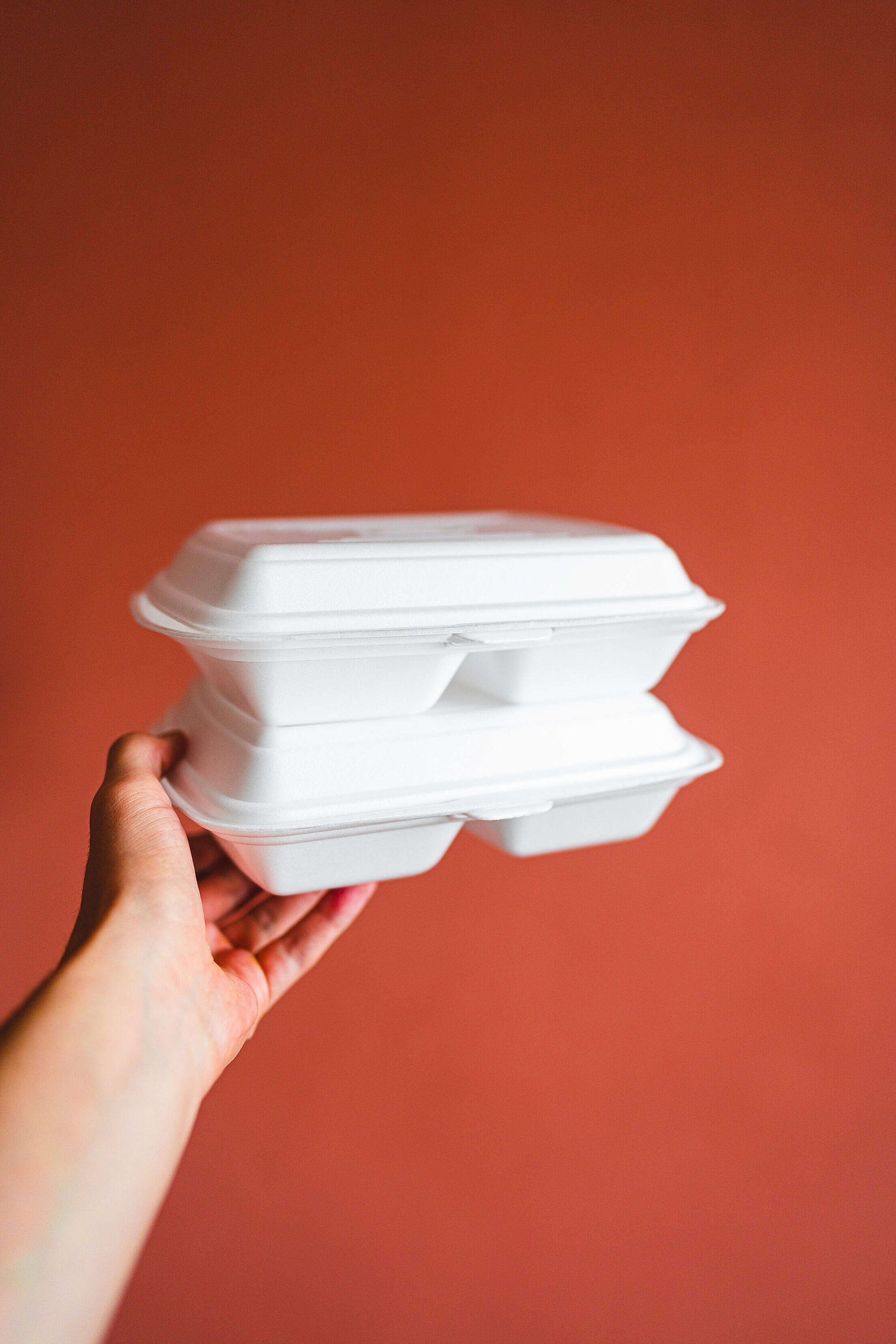 Hand Holding Food Boxes Free Stock Photo