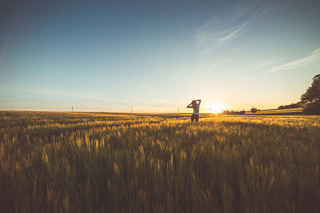 Download Happy Girl Dancing in a Wheat Field on Sunset #2 FREE Stock Photo