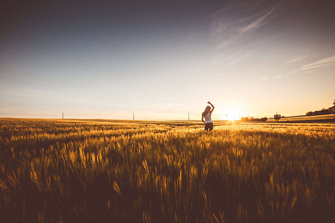 Download Happy Girl Dancing in a Wheat Field on Sunset FREE Stock Photo