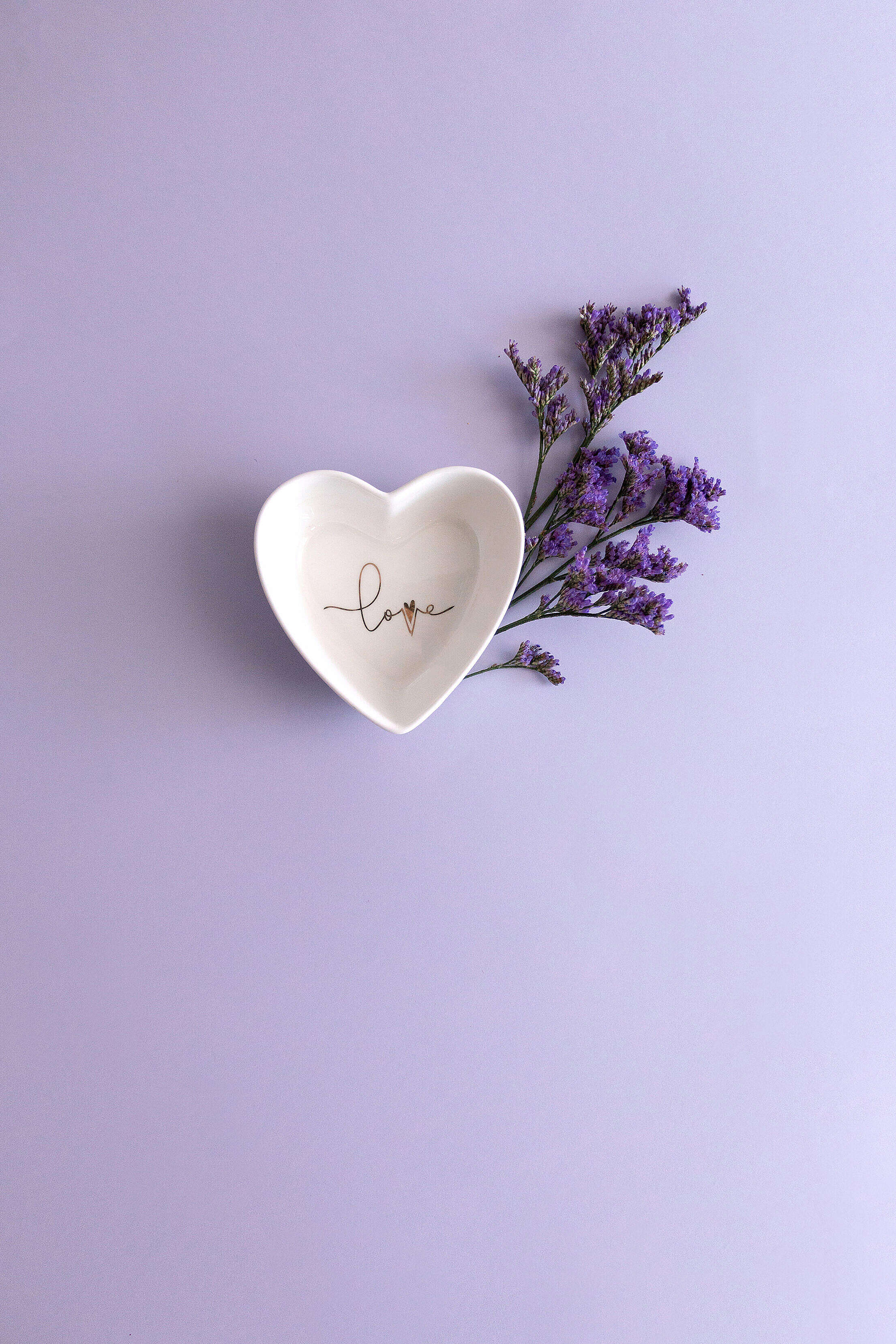 Heart Shaped Bowl with Flower on Purple Background Free Stock Photo