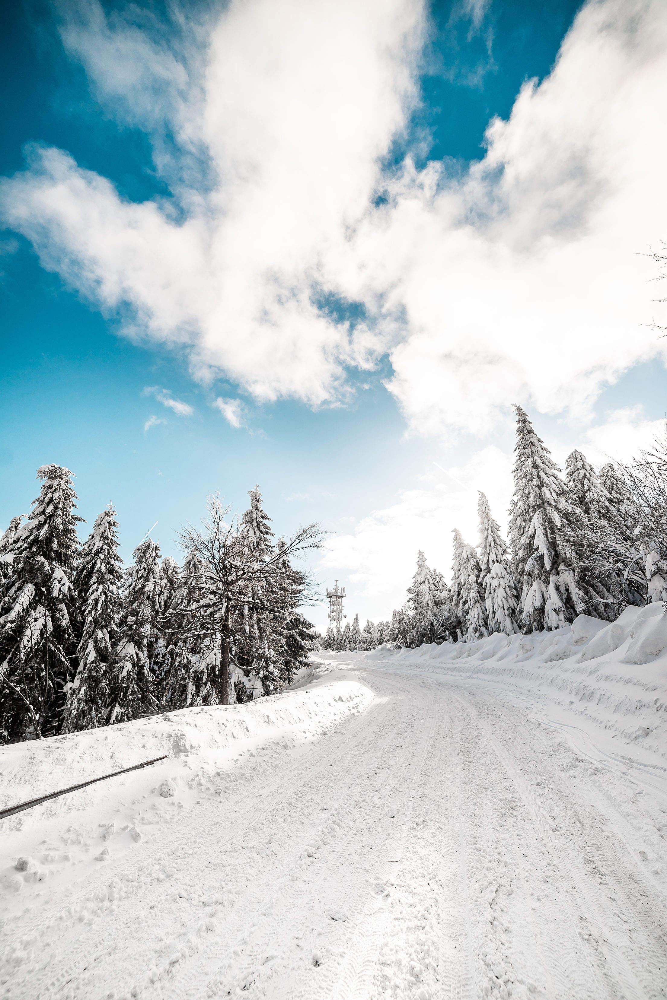 Heavy Snowy Road Free Stock Photo